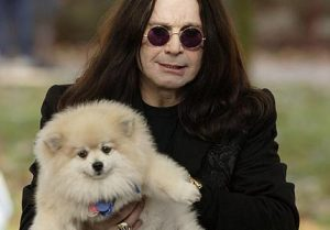 ozzy-and-his-puppy-ozzy-osbourne-25596061-430-300